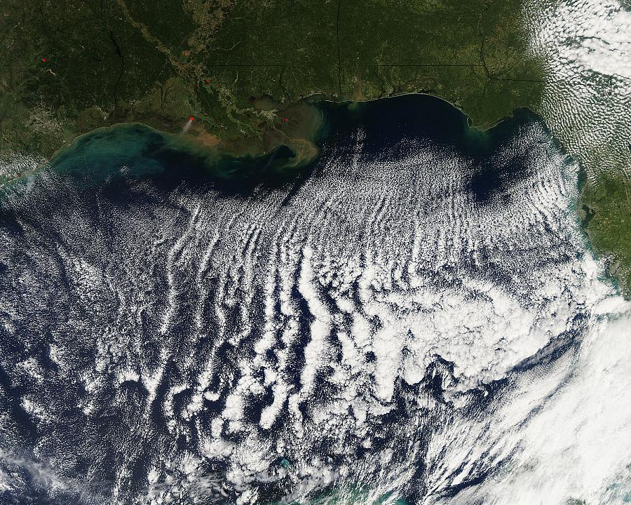 "Cloud Streets photographed over the Gulf of Mexico on October 18, 2009.  This display is a prominent example of organized rows of cumulus clouds known as ""cloud streets.""  Image Source:  NASA MODIS"