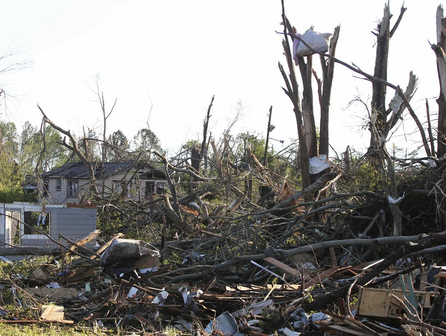 A mattress rests high above the home it once occupied, nestled in the broken branches of a tree stripped by the April 28, 2011 tornado.